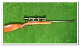 Carabine 22LR Gaucher avec lunette